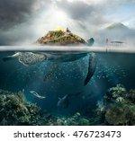 Beautiful Underwater View...