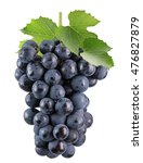 purple grapes isolated on the...