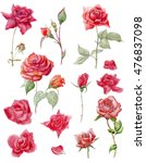 watercolor floral set with... | Shutterstock . vector #476837098