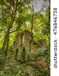 Small photo of Overgrown abandoned ruined building in the weedy forest.