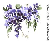 Watercolor Wisteria Flower Wit...