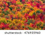 Aerial Scenic Autumn View Of A...