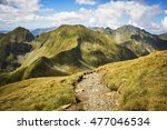 path in fagaras mountains ... | Shutterstock . vector #477046534