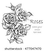 hand draw vintage rose. vector... | Shutterstock .eps vector #477047470