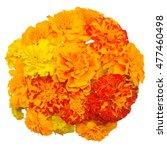 a bouquet of flowers marigold...   Shutterstock . vector #477460498