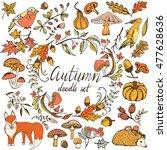 big vector autumn set with ... | Shutterstock .eps vector #477628636