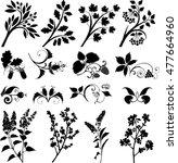 vector plant series | Shutterstock .eps vector #477664960