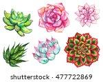watercolor succulent cactus... | Shutterstock . vector #477722869