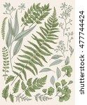 Leaf Set. Vintage Floral...