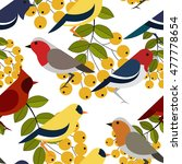 seamless pattern with colorful... | Shutterstock .eps vector #477778654