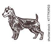 stylized skeleton jack russell... | Shutterstock .eps vector #477793903