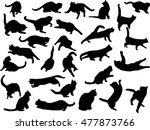illustration with cat... | Shutterstock .eps vector #477873766