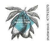 mango tree vintage design... | Shutterstock .eps vector #477915070