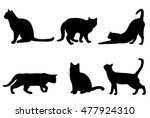 Stock vector cats silhouettes vector 477924310