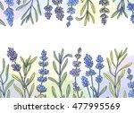 hand drawn lavender banner ...   Shutterstock .eps vector #477995569