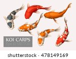 set of koi carps | Shutterstock .eps vector #478149169