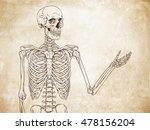 human skeleton posing over old... | Shutterstock .eps vector #478156204