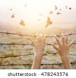 woman hands hold the rusty... | Shutterstock . vector #478243576
