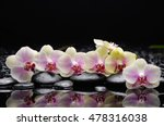 Set Of White  Orchid With...