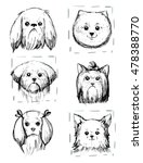 dogs portraits sketches. vector ... | Shutterstock .eps vector #478388770