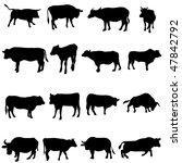 bovine animals from around the... | Shutterstock .eps vector #47842792
