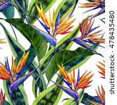 watercolor tropical flowers ... | Shutterstock . vector #478435480