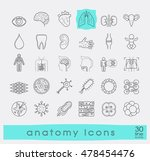 icons presenting various organs ... | Shutterstock .eps vector #478454476