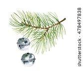 christmas composition of fir... | Shutterstock . vector #478497838