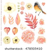 collection vector flowers... | Shutterstock .eps vector #478505410
