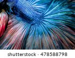 abstract blue beautiful tail | Shutterstock . vector #478588798