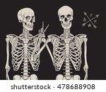 Human Skeletons Best Friends...