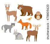 vector set of flat animals.... | Shutterstock .eps vector #478805620