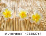 Three Frangipani Flower On...