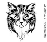 the head of cat. hand drawn ink ...   Shutterstock .eps vector #479033419