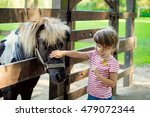 Cute Little Girl Petting A Pon...