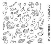 set doodles elements vegetables ... | Shutterstock .eps vector #479202520
