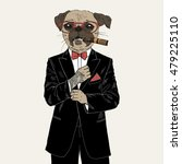 pug dressed up in tuxedo ... | Shutterstock .eps vector #479225110