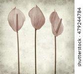 textured old paper background... | Shutterstock . vector #479244784