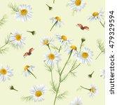 vector chamomile flower... | Shutterstock .eps vector #479329594