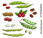 nuts  kernels and berries... | Shutterstock .eps vector #479396893