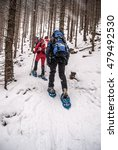 Small photo of Spital am Semmering, Austria - January 23, 2016: hikers on snowshoes on winter forest on hiking trail from Spital am Semmering to Stuhleck peak in Fischbacher Alpen mountain range in Styria