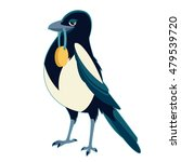 image of a magpie with medal   Shutterstock . vector #479539720