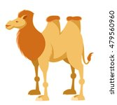 image of a cartoon yellow camel | Shutterstock . vector #479560960