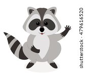 funny raccoon waving  isolated... | Shutterstock .eps vector #479616520