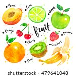 hand painted watercolor... | Shutterstock . vector #479641048