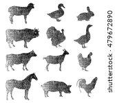 Meat Symbols. Hand Drawn Farm...