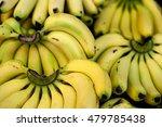 clusters of bananas | Shutterstock . vector #479785438