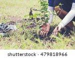volunteers to plant trees | Shutterstock . vector #479818966