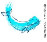 big blue whale   vector hand... | Shutterstock .eps vector #479822830
