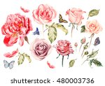 Stock photo watercolor set with different roses illustration 480003736
